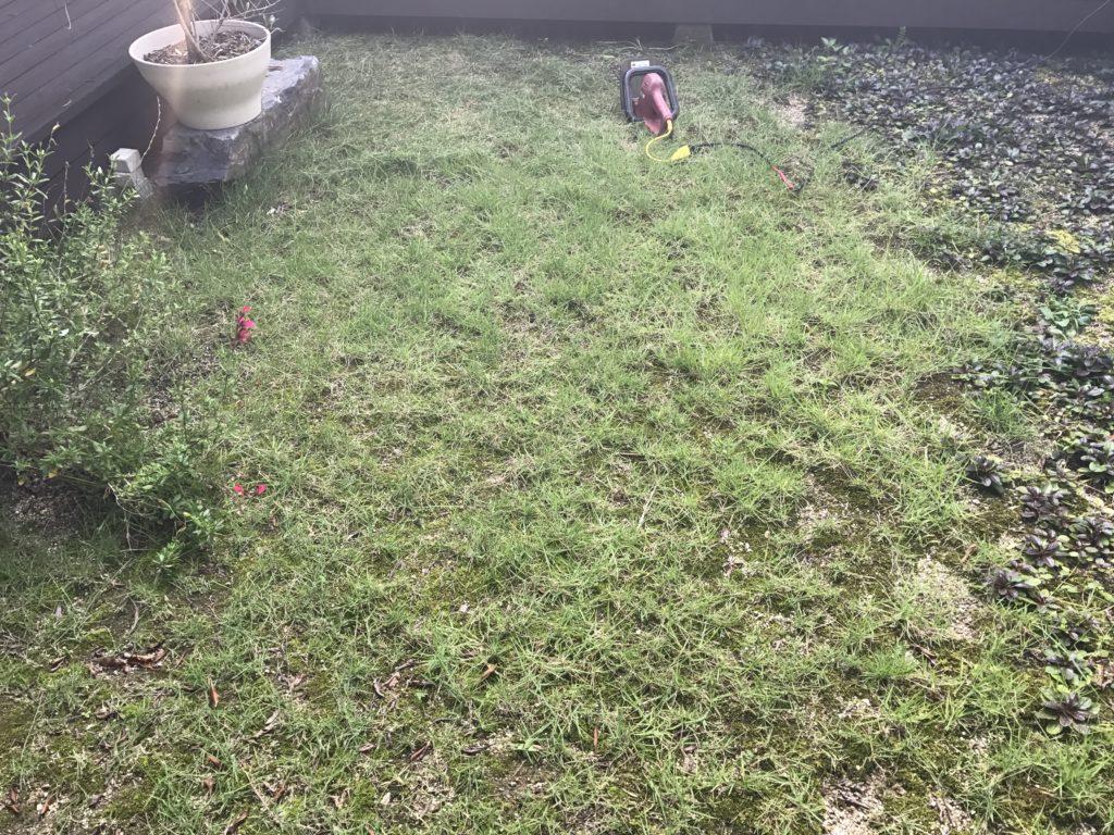 芝刈り前の風景
