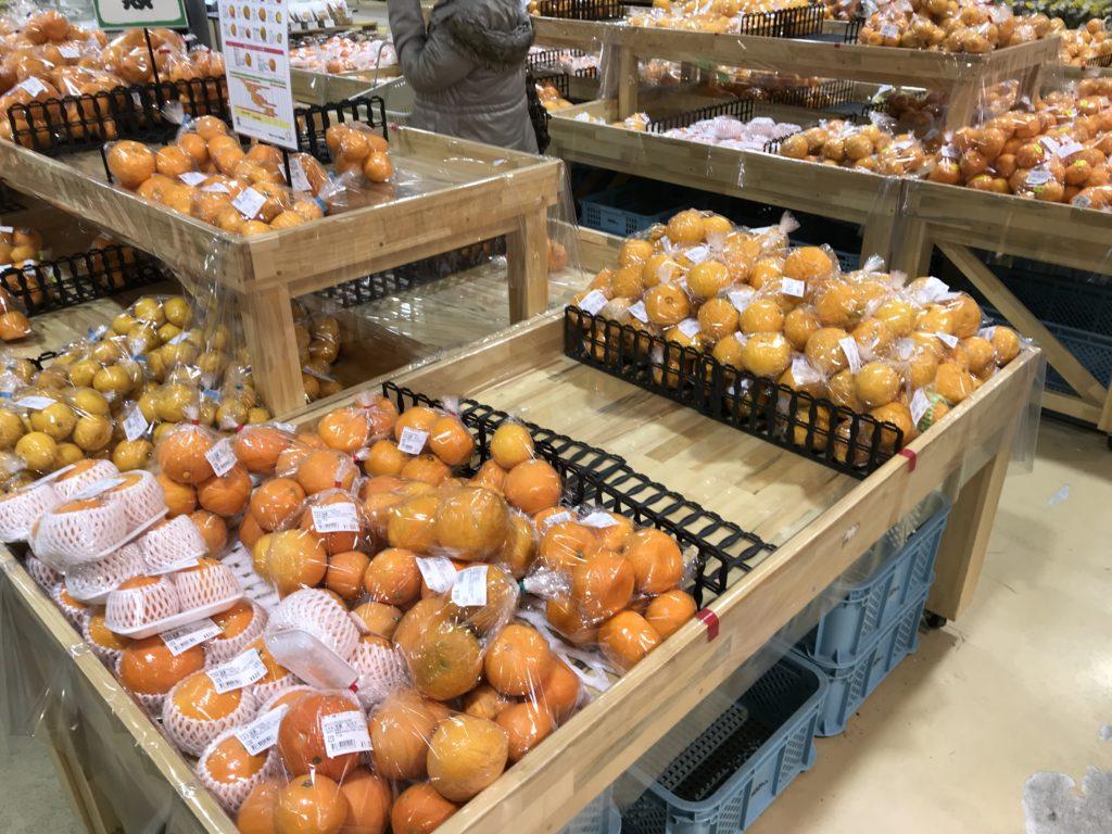 きさいや広場の柑橘売り場コーナー