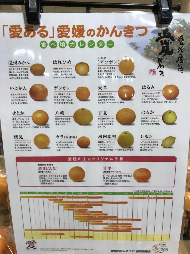 愛媛県の柑橘の種類の案内カード