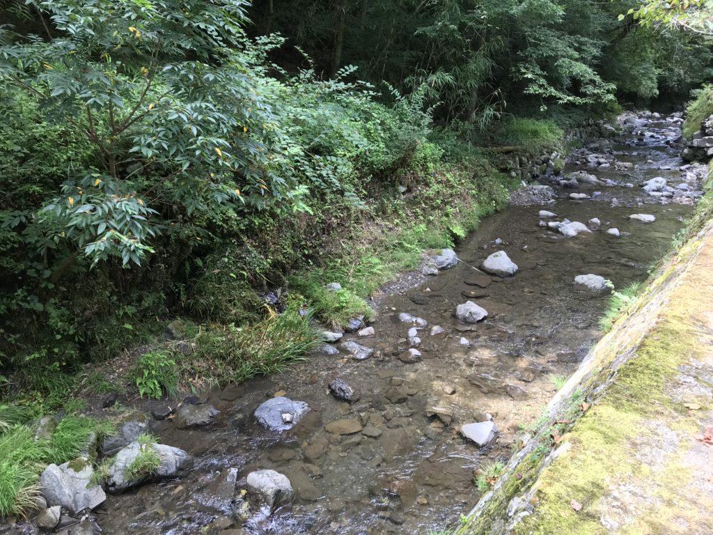 節安ふれあいの森に流れるアマゴが泳いでいる川