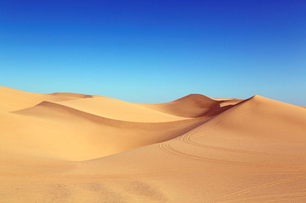 砂漠の様子