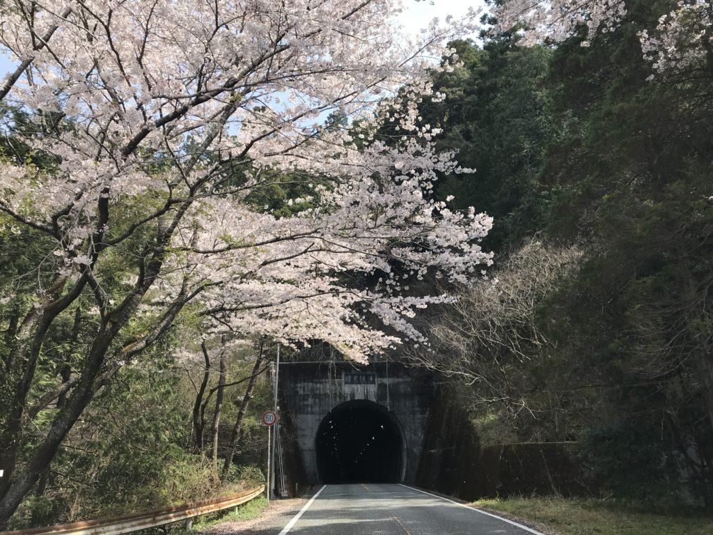 目黒隧道の目黒川の入り口