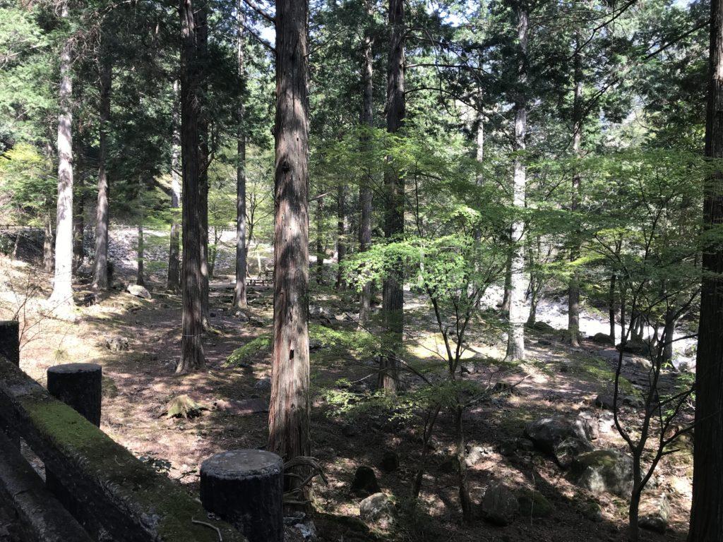 【滑床渓谷】のキャンプ場