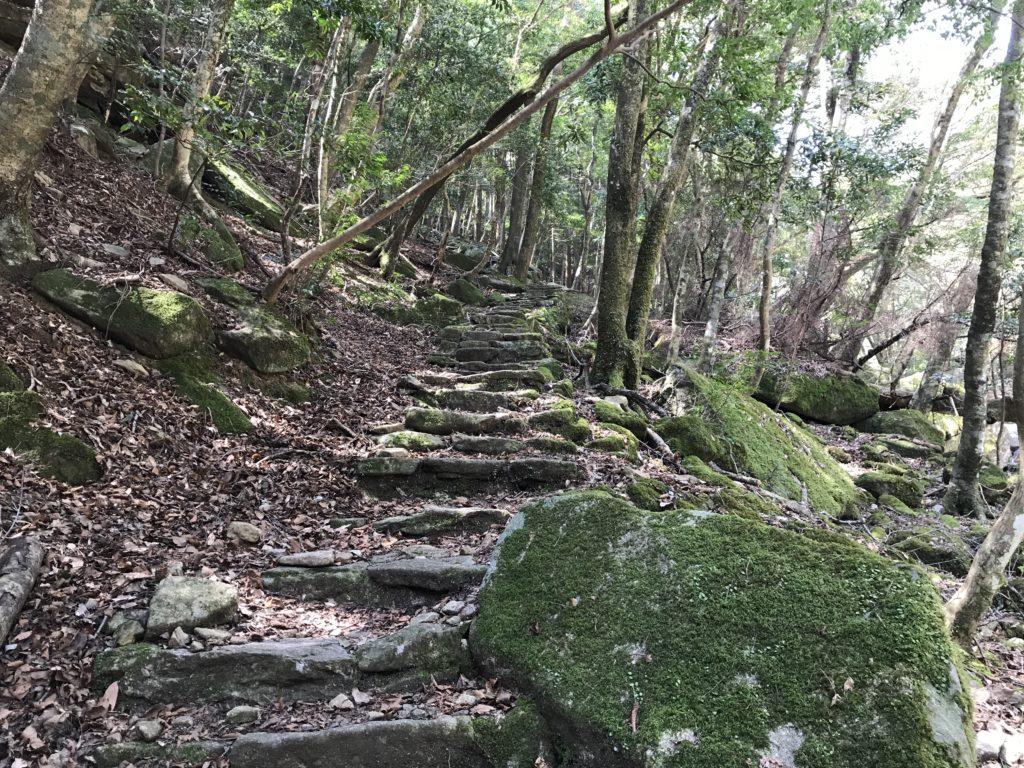 【滑床渓谷】の探勝歩道の階段