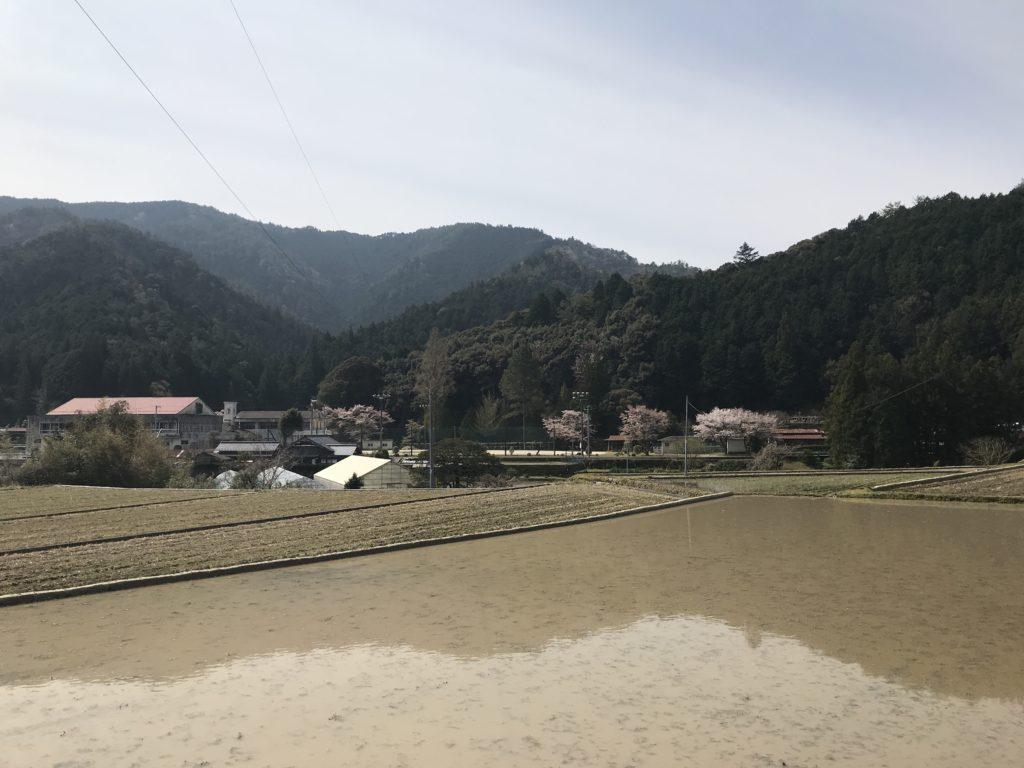 【松野町立松野南小学校】の遠景