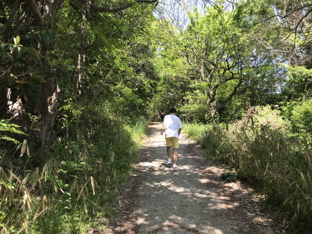 高屋神社【天空の鳥居】への舗装された道を歩く様子