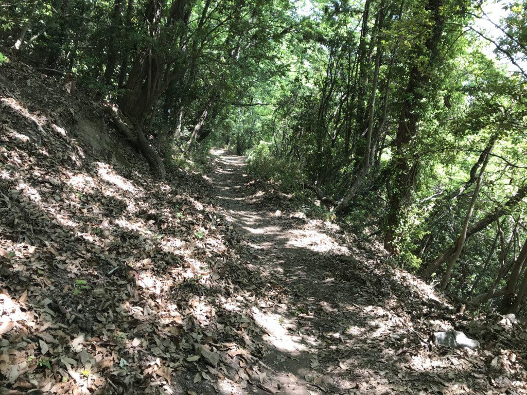 高屋神社【天空の鳥居】への急勾配な歩道