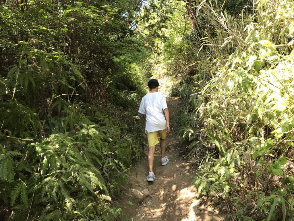 高屋神社【天空の鳥居】への狭い歩道