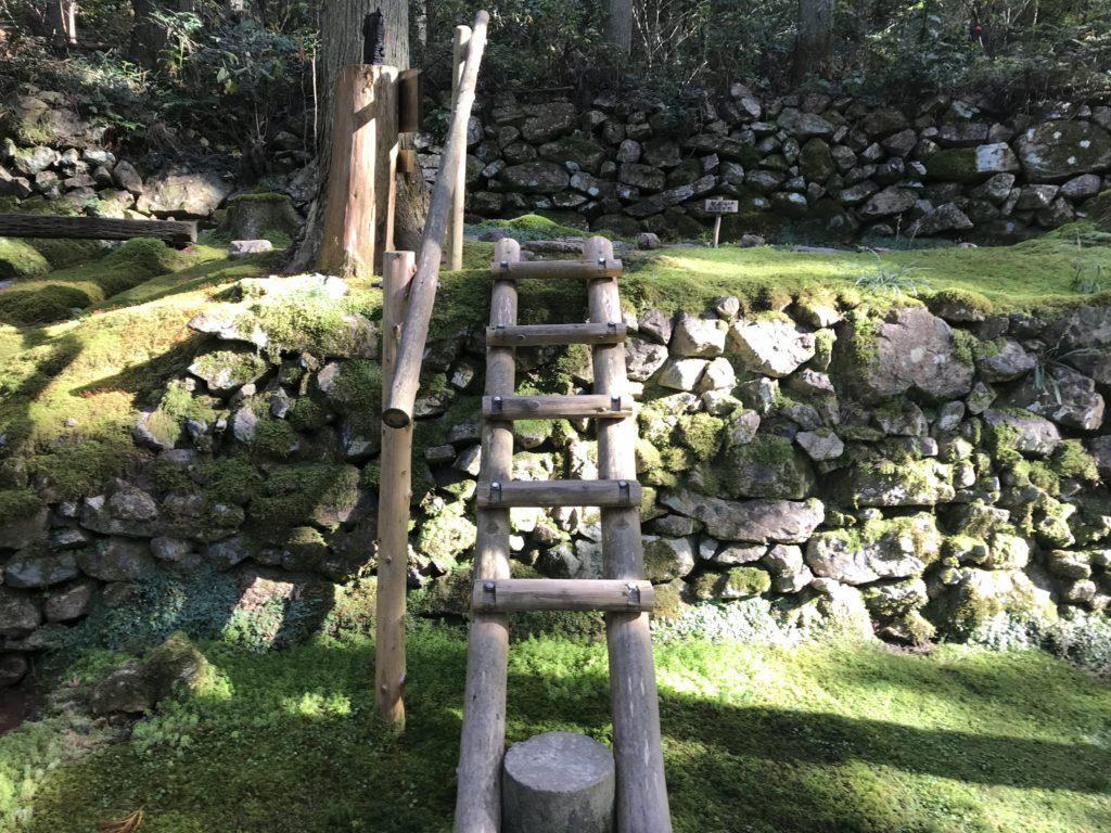 『こけむしろ』の苔庭にあるはしご階段