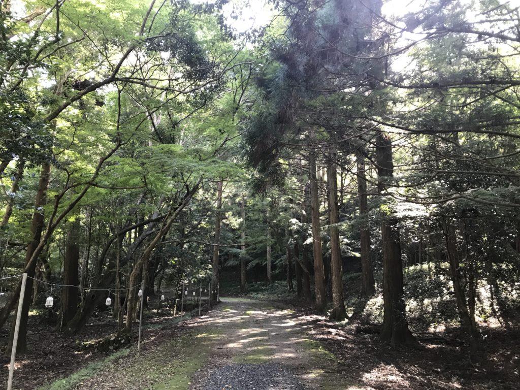 『少彦名神社』の参道の様子