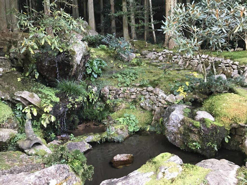 『こけむしろ』の苔庭の隣へ続く庭