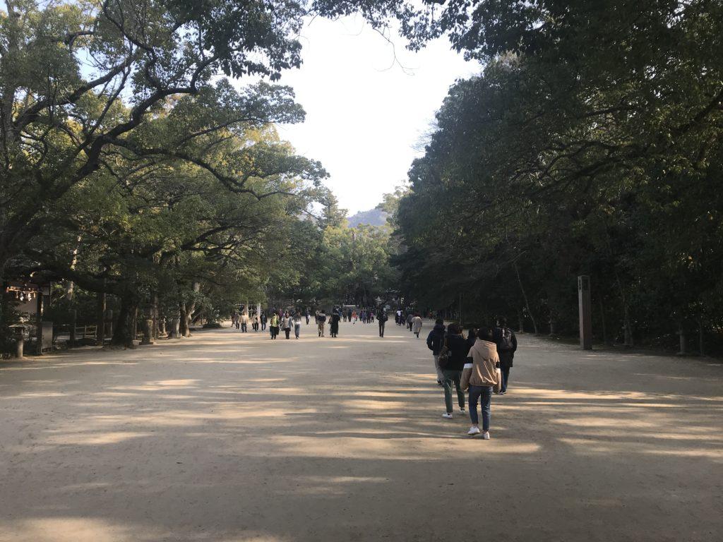大山祇神社の大楠が見える参道