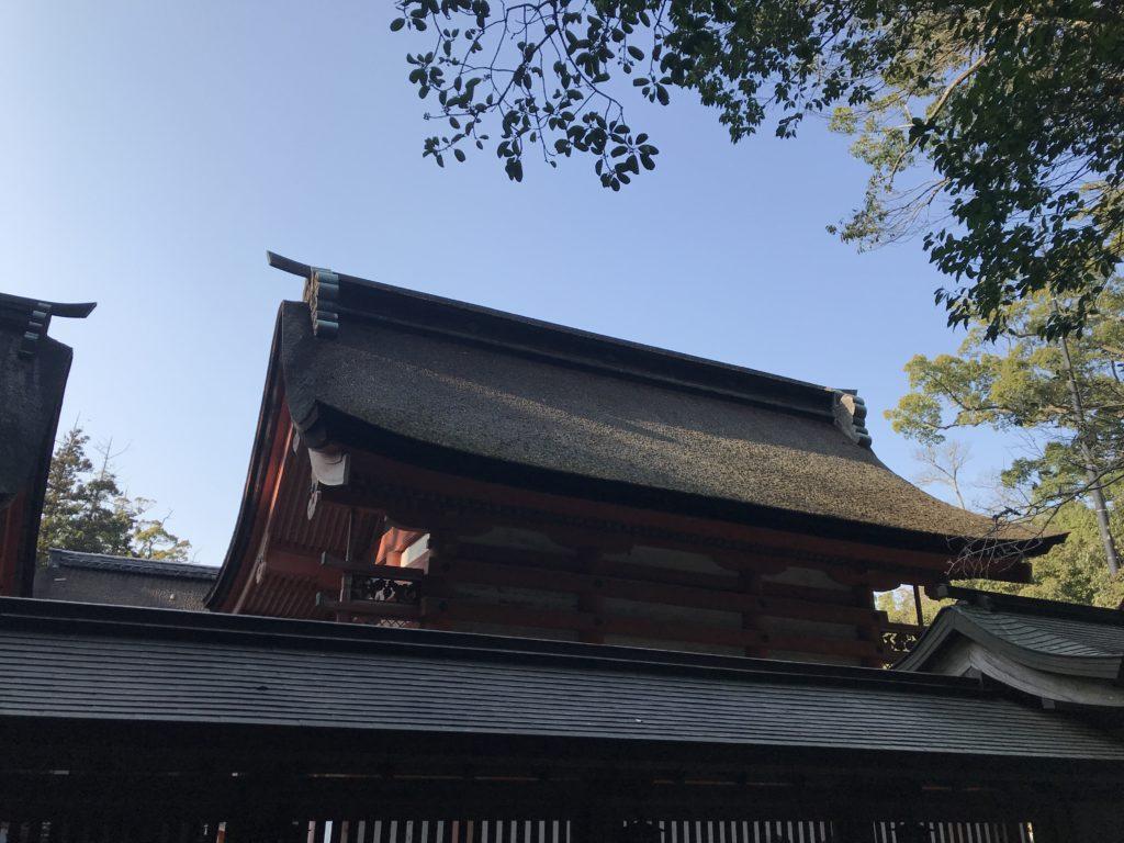 大山祇神社の本殿を後方から眺めた様子